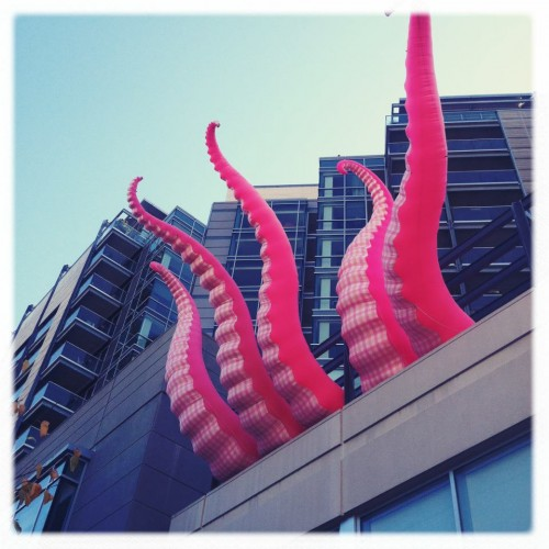 Kraken on Hotel Vetro - Plaza Towers - Iowa City - Photo by Zak Neuman